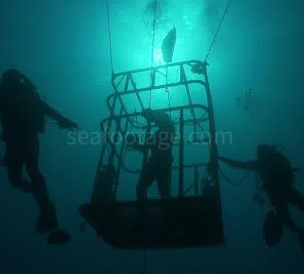 Cage_et_plongeurs_en_contre_jour