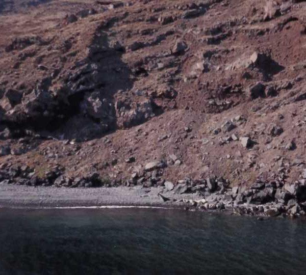 Arrivée drone sur plage Otaries