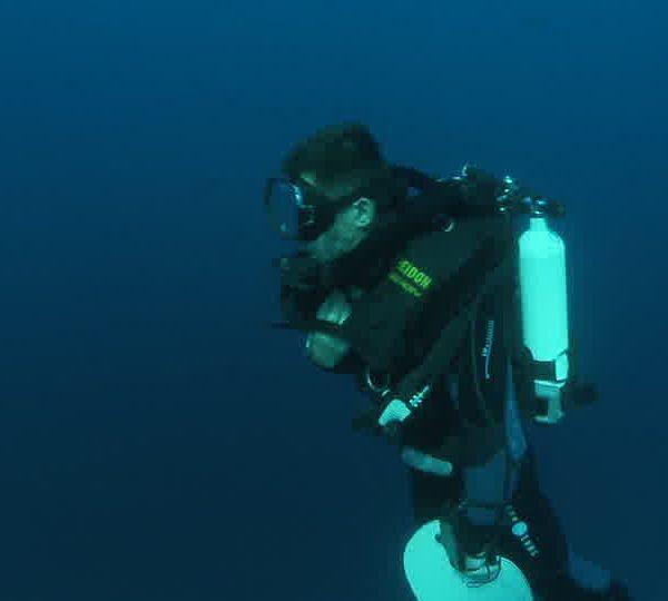Requin_blanc_camera_va_juste_a_côte_de_lui